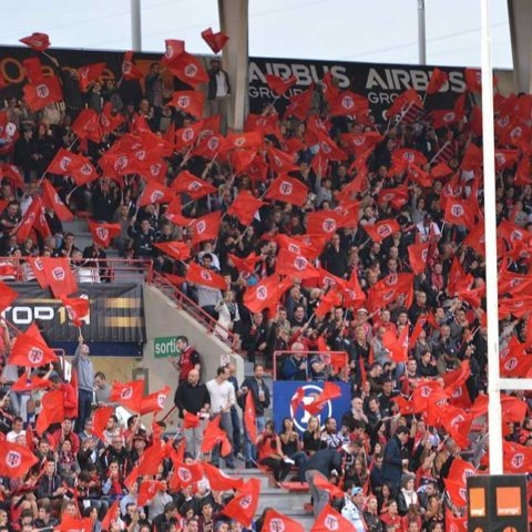 Rugby : Le Stade Toulousain