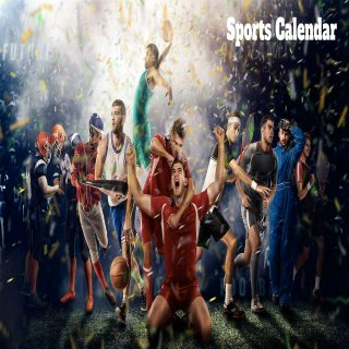 VOGOSPORT FAN calendar in January
