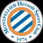 Logo MHSC